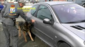 Livorno, Guardia di Finanza: caccia agli spacciatori di droga