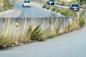 Aggiudicati i lavori di manutenzione e scerbamento del verde pubblico