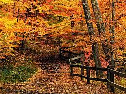 Vivere ottobre, romantico mese d'autunno