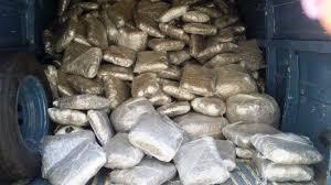 Dal Perù in via Padova passando per l´Olanda: la Polizia di Stato ieri ha eseguito 45 provvedimenti dell´Autorità Giudiziaria per traffico internazionale di droga