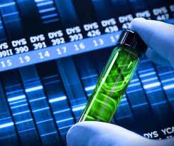 NASCE LA BANCA DATI ITALIANA DEL DNA
