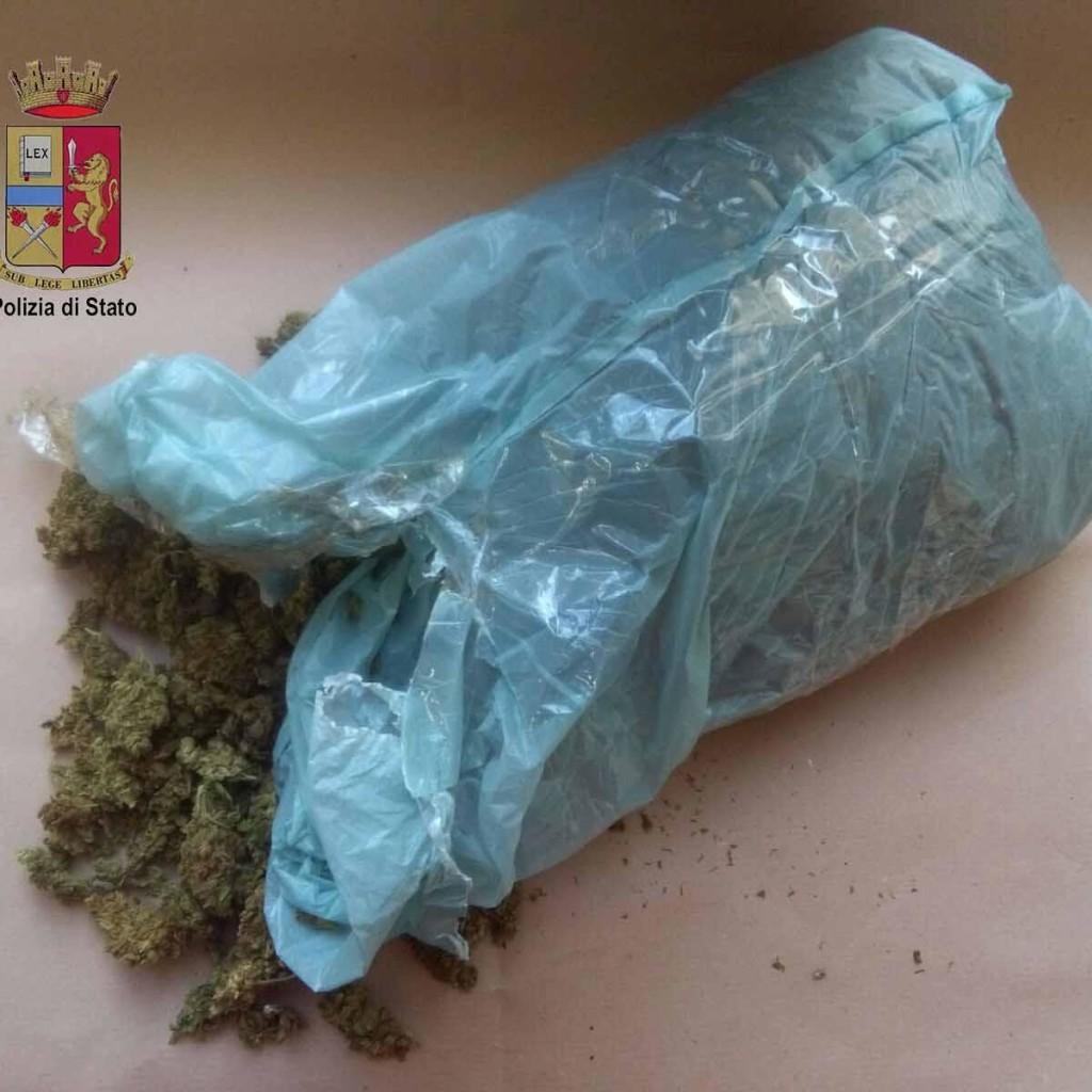 La Polizia arresta pusher. Quasi mezzo chilo di marijuana nascosto in casa