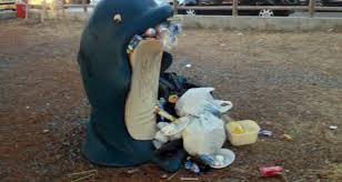 Criticità raccolta rifiuti, l'assessore Maisano scrive agli uffici