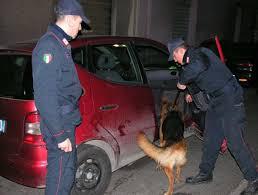 """""""ATHOS"""" e """"ASZKOR"""" : due dei cani Carabinieri al servizio del G7"""