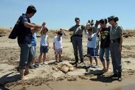 I Carabinieri della Forestale di Sabaudia liberano in mare due tartarughe Caretta Caretta
