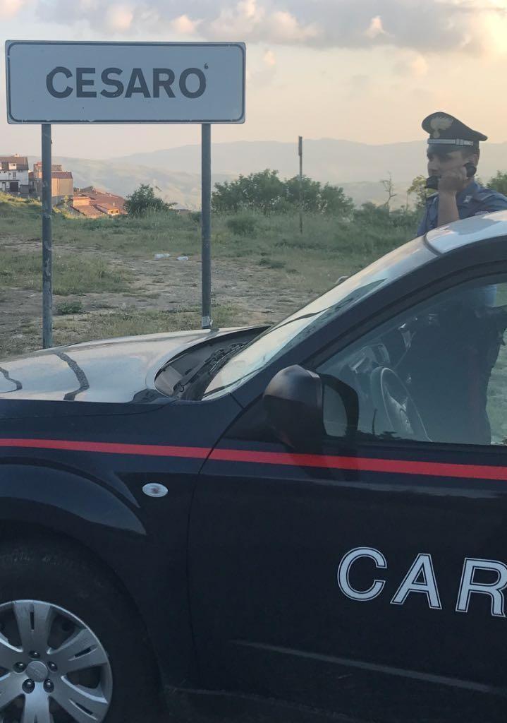 Giro di vite nei Nebrodi: 7 persone denunciate dai Carabinieri a Cesarò (ME)