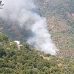 Montagnareale (ME): Piromane arrestato dai Carabinieri per incendio boschivo