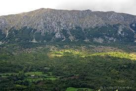 Salvato dalla polizia escursionista smarrito in zona boschiva sul monte Morrone