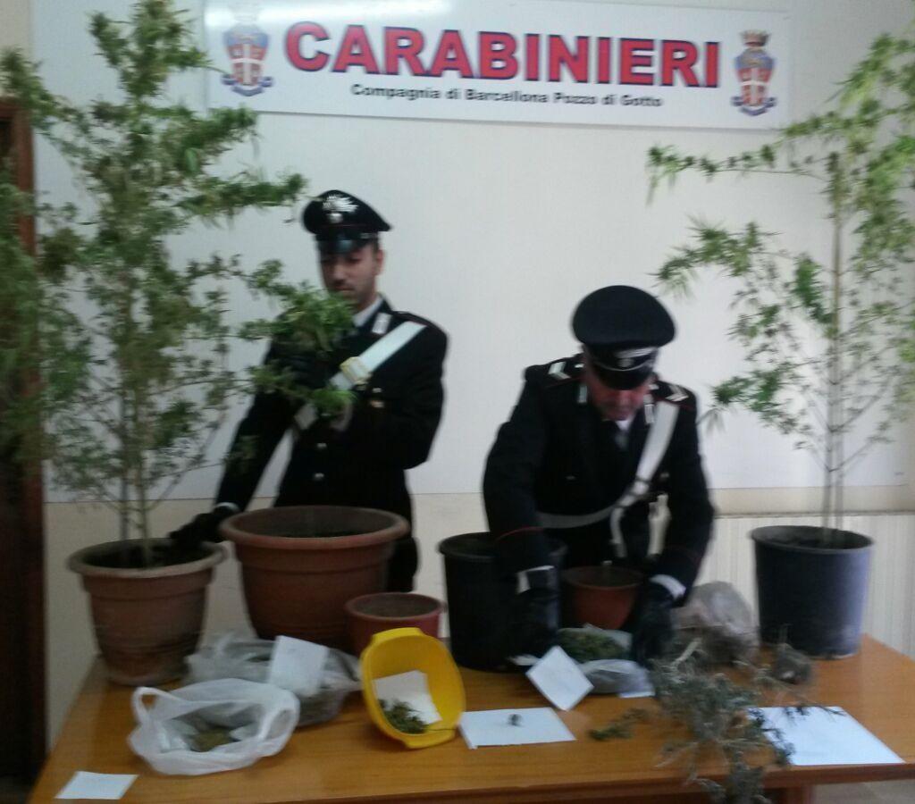 Attività istituzionali dei Carabinieri a Sant'Agata Militello e Barcellona P.G.
