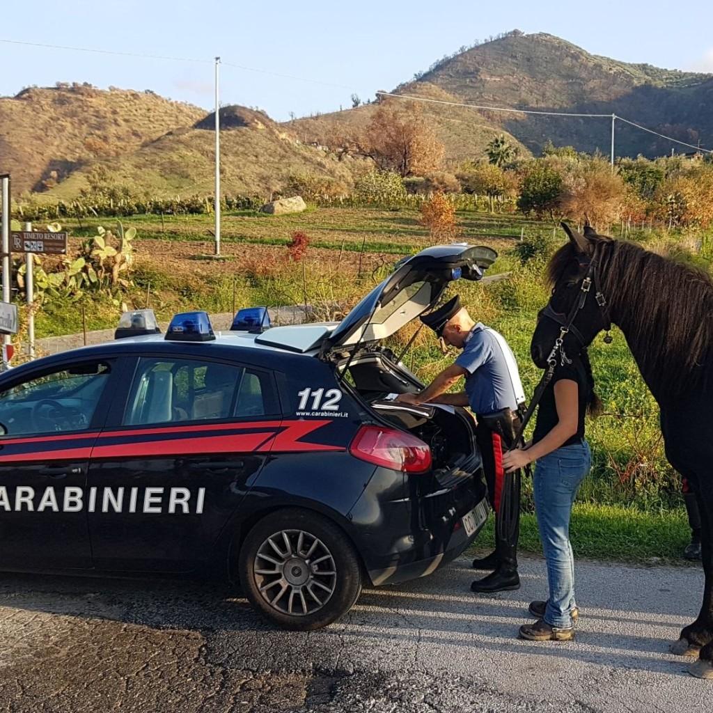 Servizi istituzionali dei Carabinieri in provincia di Messina
