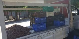 Controlli agroalimentari dei Carabinieri Forestali, sequestrati 5 quintali di castagne e meloni privi di certificazione da venditore ambulante a Castel di Sangro