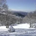 Emergenza neve,  la Città Metropolitana predispone interventi sulla viabilità provinciale