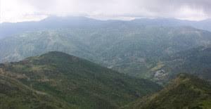 Parco naturale dei monti Peloritani, donati alla Città Metropolitana gli atti della proposta istitutiva dell'area protetta