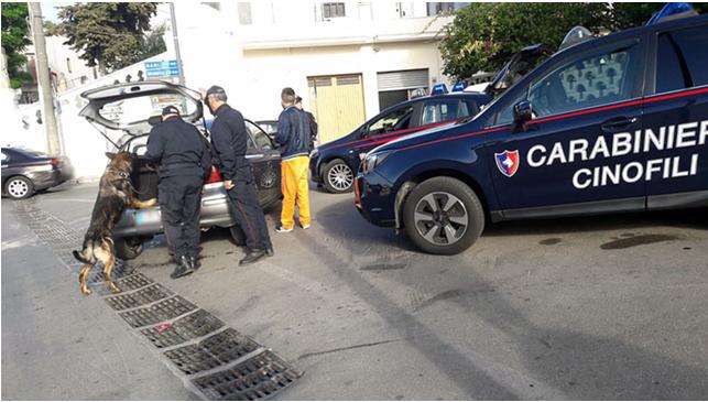 """BARCELLONA P.G.: Arrestate quattro persone nel corso della mattinata.  Un 39 enne di Barcellona coltivava """"marijuna"""" in una serra costruita in casa.  Arrestati, inoltre, due coniugi per furto di energia elettrica ed un evaso dagli arresti domiciliari"""
