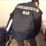 Controlli dei Carabinieri, 20 ditte ispezionate