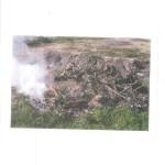 Bernalda: Smaltimento illecito di rifiuti da macellazione in terreno demaniale.  Denunciato un macellaio dai Carabinieri Forestali di Scanzano Jonico