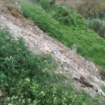 Bernalda: Abbandono di rifiuti in area comunale.  I Carabinieri Forestali denunciano i responsabili dell'abbandono e sequestrano  l'area di discarica