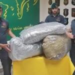 GUARDIA DI FINANZA, CATANIA: SEQUESTRATI 50 KG DI MARIJUANA. ARRESTATO UN CORRIERE ALBANESE