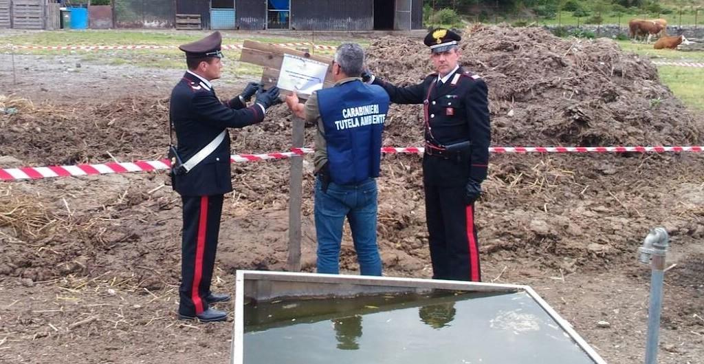 Mistretta: controlli congiunti dei Carabinieri con il personale dei Speciali dell'Arma