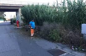 Verde pubblico e manto stradale a Milazzo, interrogazione di Bagli