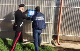 Barcellona P.G. : perquisizione azienda zootecnica e arresto sorvegliato speciale