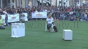 Ritorna l'1 e il 2 giugno l'appuntamento col Dog Day in marina Garibaldi e a villa Vaccarino