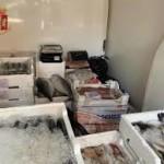 Brolo. La Polizia di Stato sequestra 170 chili di pesce in cattivo stato di conservazione. Era destinato alla distribuzione al dettaglio