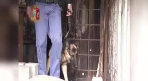 PALERMO: LA POLIZIA DI STATO SMANTELLA UNA FIORENTE ATTIVITA' DI SPACCIO ATTRAVERSO LA QUALE LA DROGA RAGGIUNGEVA I CLIENTI A QUALSIASI ORA E NEI LUOGHI  ANCHE PIU' PERIFERICI