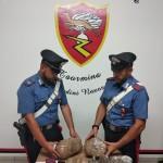 Taormina (ME): 36enne arrestato in flagranza di reato per detenzione di sostanze stupefacenti ai fini di spaccio