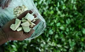Barletta. Importavano  cocaina dalla Colombia passando per Amsterdam. Arrestati dai Carabinieri  7 trafficanti in esecuzione di un'ordinanza di custodia cautelare emessa  su richiesta della DDA di Bari.