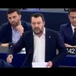 Crisi, la proposta di Salvini: cosa dice la Costituzione