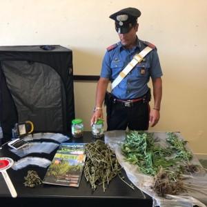 San Pier Niceto (ME): i carabinieri arrestano un 26enne che deteneva marijuana e coltivava in casa piante di canapa