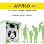 RECUPERO DELLA PLASTICA: ALEMA PAANDAA MILAZZO è un azienda nata nel 2019 pensando a come poter trarre profitto e portare benefici alla nostra città