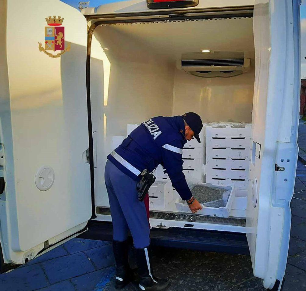 La Polizia di Stato di Barcellona P.G. sequestra oltre 1.100 chilogrammi di novellame di sarda. Elevate sanzioni per oltre 38.000 euro