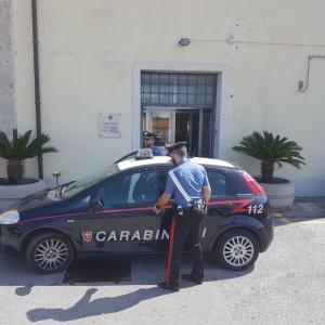 """Pace del Mela (Me): coltiva piante di Cannabis nell'Orto. I Carabinieri arrestano un giovane """"agricoltore""""."""