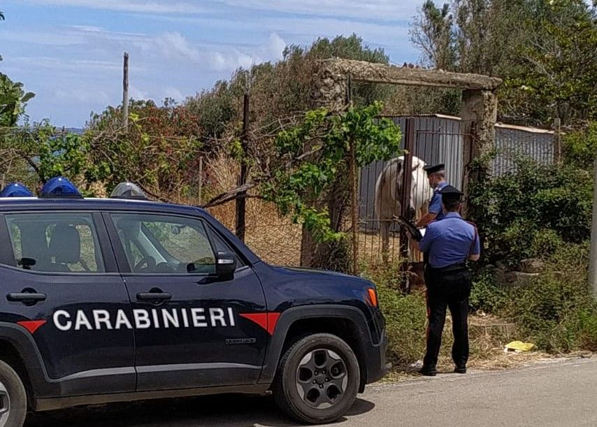 Caronia (ME): Controlli ambientali dei Carabinieri. Un allevatore denunciato